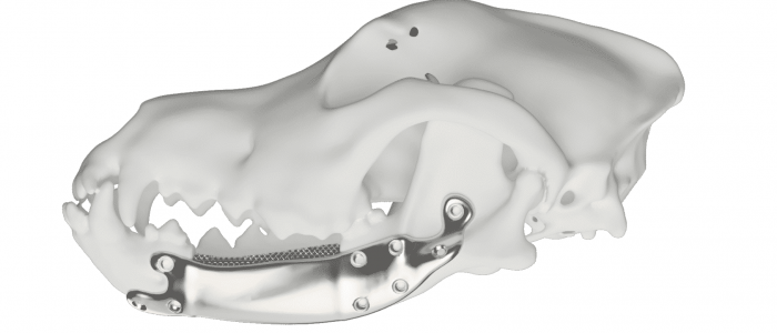 Patientenspezifisches Titanimplantat aus dem 3D-Drucker
